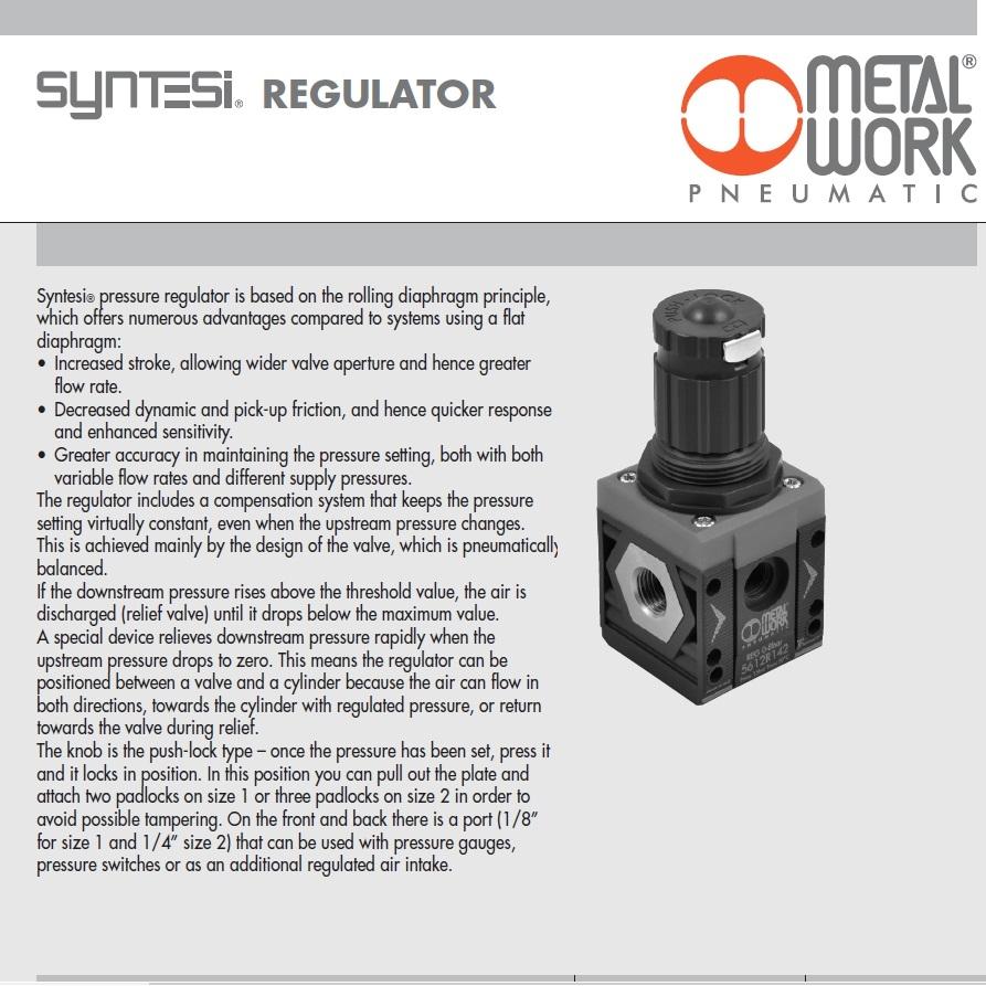 38842 syntesi pressure regulator size 2